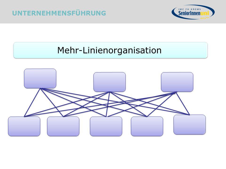 Mehr-Linienorganisation UNTERNEHMENSFÜHRUNG