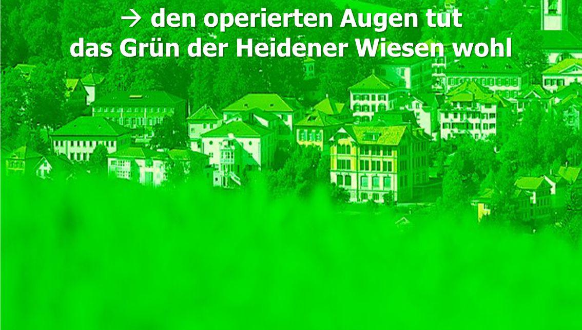  den operierten Augen tut das Grün der Heidener Wiesen wohl