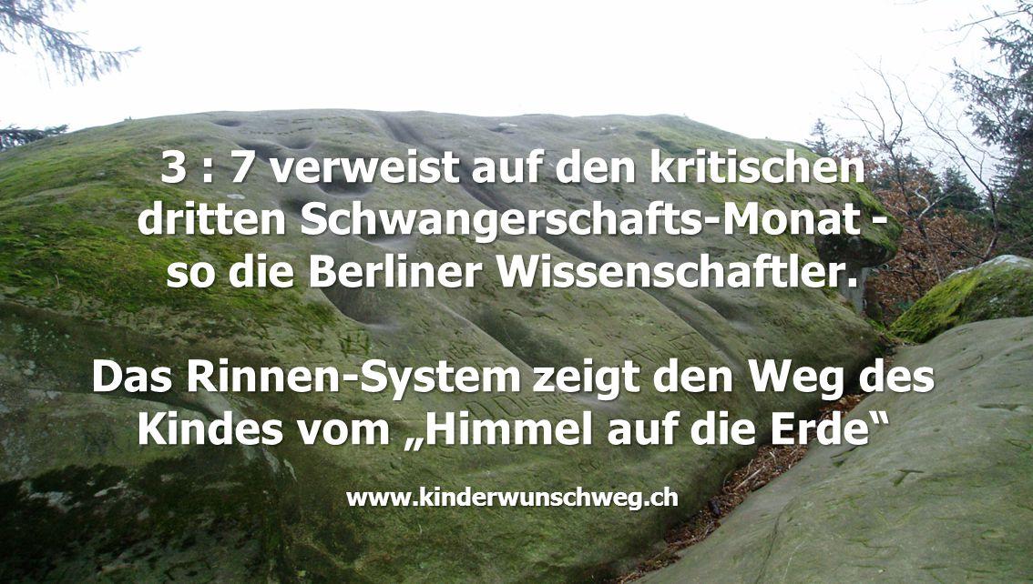 """3 : 7 verweist auf den kritischen dritten Schwangerschafts-Monat - so die Berliner Wissenschaftler. Das Rinnen-System zeigt den Weg des Kindes vom """"Hi"""