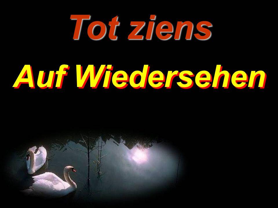 Übersetzung holländisch – deutsch: Walter Weith.....................................