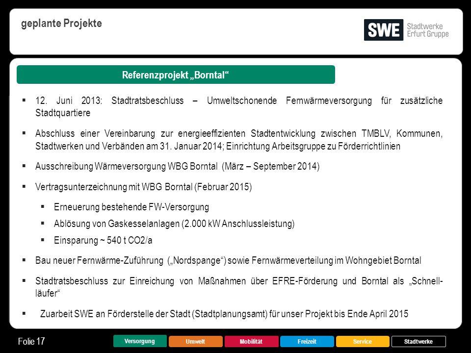 """UmweltMobilitätFreizeitService Folie 17 Versorgung Stadtwerke Referenzprojekt """"Borntal"""" geplante Projekte  12. Juni 2013: Stadtratsbeschluss – Umwelt"""
