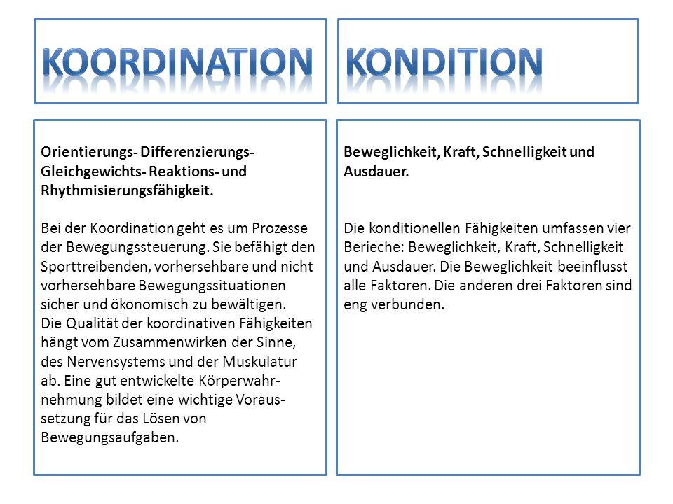 Orientierungs- Differenzierungs- Gleichgewichts- Reaktions- und Rhythmisierungsfähigkeit. Bei der Koordination geht es um Prozesse der Bewegungssteuer