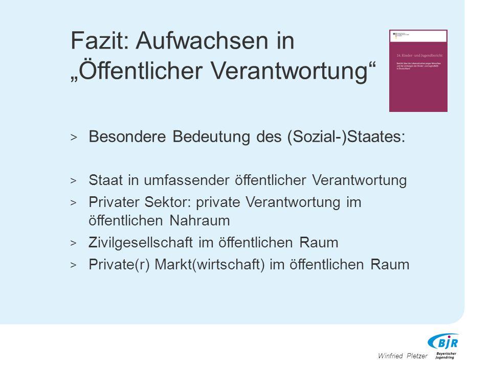 """Winfried Pletzer Fazit: Aufwachsen in """"Öffentlicher Verantwortung"""" > Besondere Bedeutung des (Sozial-)Staates: > Staat in umfassender öffentlicher Ver"""