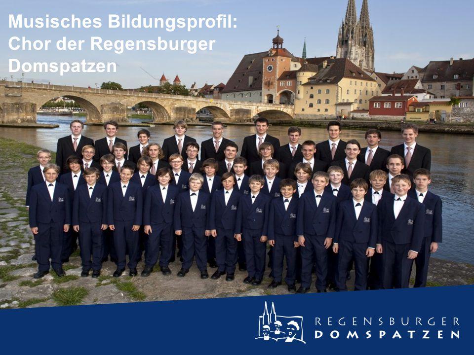 Fraktale Nanowelten Musisches Bildungsprofil: Chor der Regensburger Domspatzen
