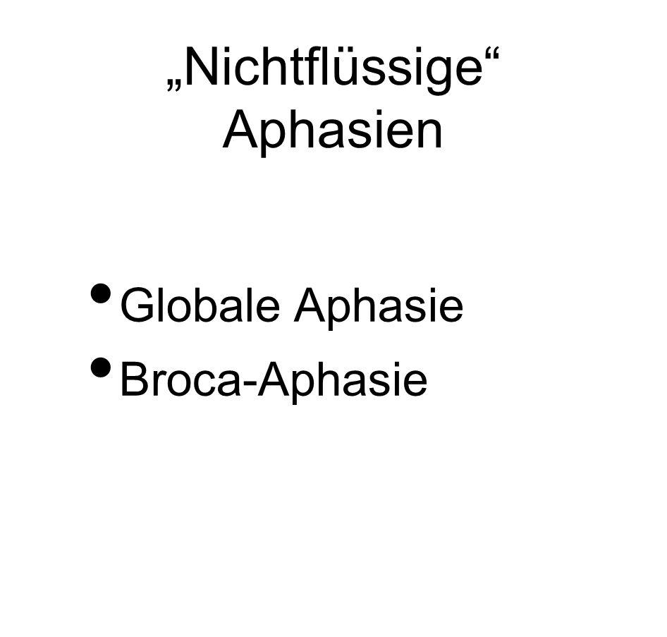 """""""Nichtflüssige"""" Aphasien Globale Aphasie Broca-Aphasie"""