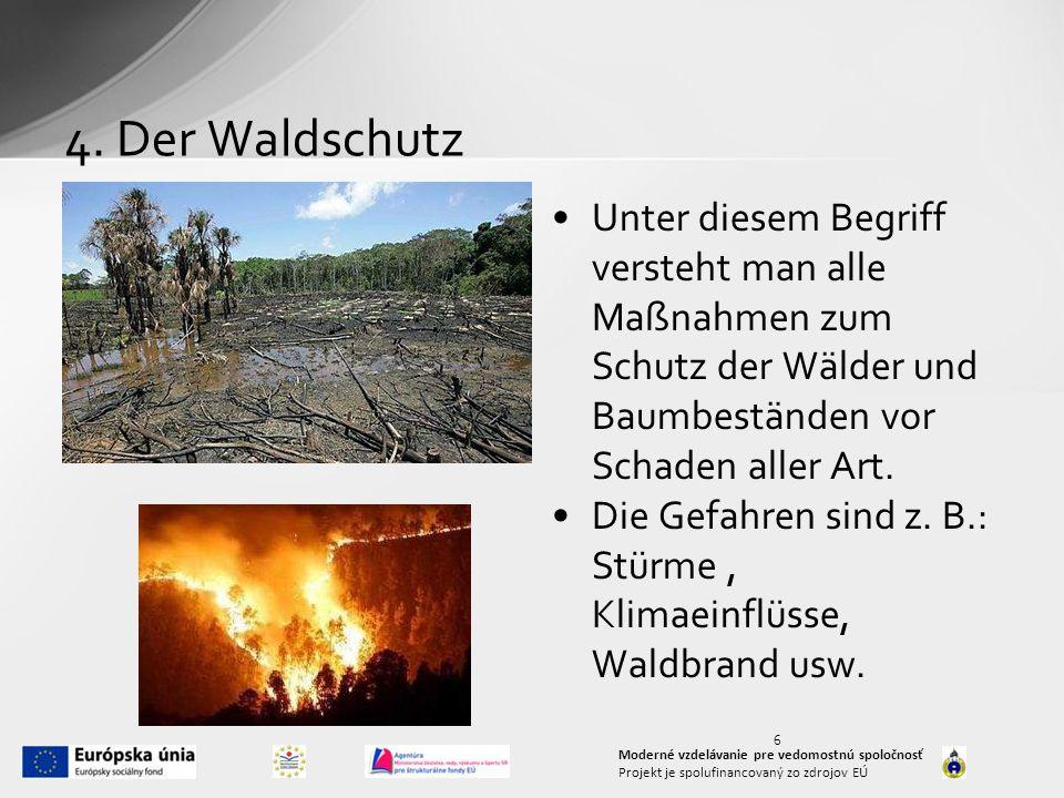 4. Der Waldschutz Unter diesem Begriff versteht man alle Maßnahmen zum Schutz der Wälder und Baumbeständen vor Schaden aller Art. Die Gefahren sind z.