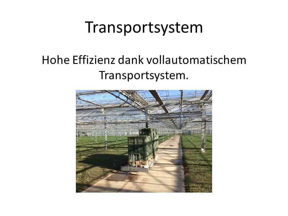 Transportsystem Hohe Effizienz dank vollautomatischem Transportsystem.