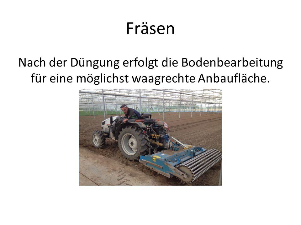 Fräsen Nach der Düngung erfolgt die Bodenbearbeitung für eine möglichst waagrechte Anbaufläche.