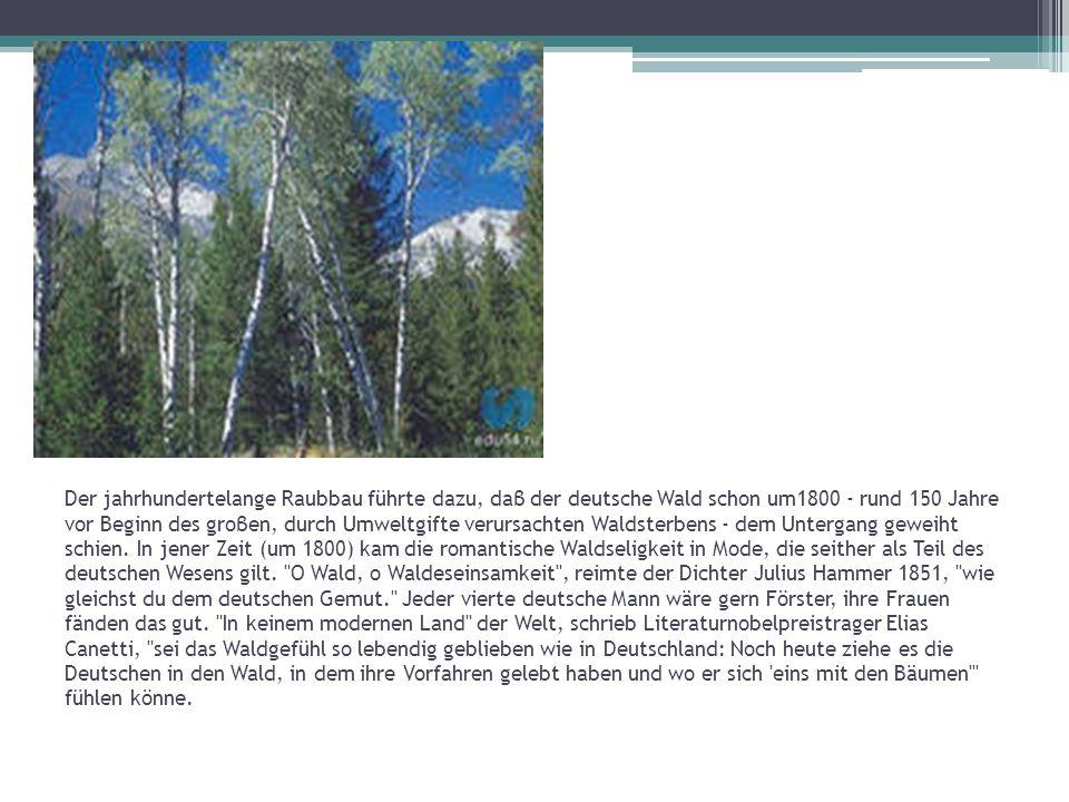 Der jahrhundertelange Raubbau führte dazu, daβ der deutsche Wald schon um1800 - rund 150 Jahre vor Beginn des groβen, durch Umweltgifte verursachten Waldsterbens - dem Untergang geweiht schien.