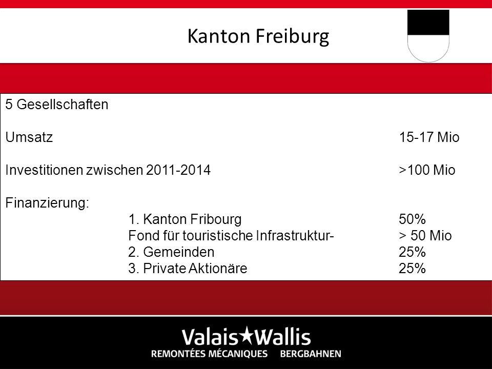 5 Gesellschaften Umsatz15-17 Mio Investitionen zwischen 2011-2014>100 Mio Finanzierung: 1. Kanton Fribourg50% Fond für touristische Infrastruktur- > 5
