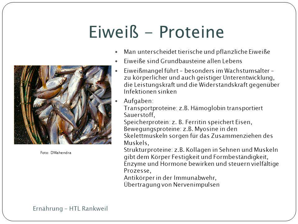 Eiweiß - Proteine Ernährung - HTL Rankweil Man unterscheidet tierische und pflanzliche Eiweiße Eiweiße sind Grundbausteine allen Lebens Eiweißmangel f