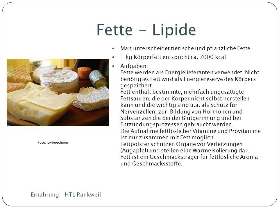 Fette - Lipide Ernährung - HTL Rankweil Man unterscheidet tierische und pflanzliche Fette 1 kg Körperfett entspricht ca. 7000 kcal Aufgaben: Fette wer