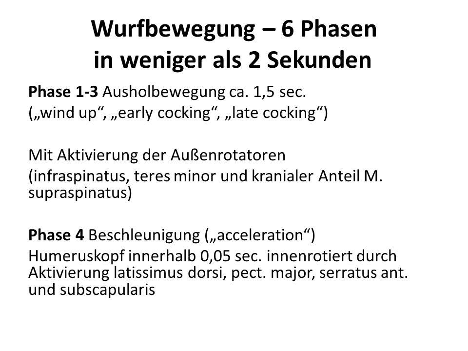 """Wurfbewegung – 6 Phasen in weniger als 2 Sekunden Phase 1-3 Ausholbewegung ca. 1,5 sec. (""""wind up"""", """"early cocking"""", """"late cocking"""") Mit Aktivierung d"""