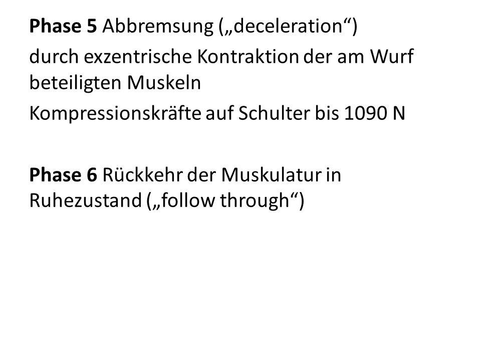 """Phase 5 Abbremsung (""""deceleration"""") durch exzentrische Kontraktion der am Wurf beteiligten Muskeln Kompressionskräfte auf Schulter bis 1090 N Phase 6"""