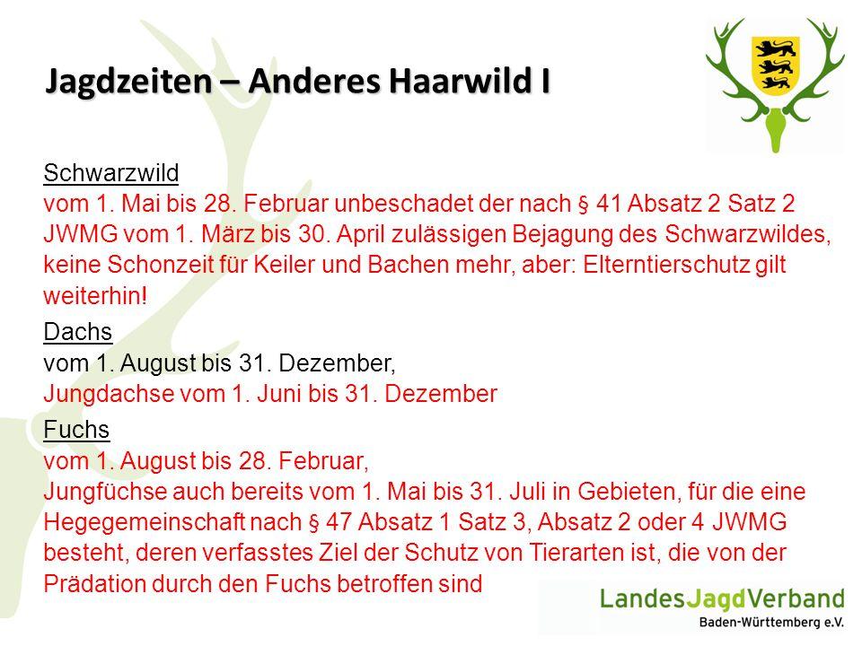 Jagdzeiten – Anderes Haarwild I Schwarzwild vom 1. Mai bis 28. Februar unbeschadet der nach § 41 Absatz 2 Satz 2 JWMG vom 1. März bis 30. April zuläss