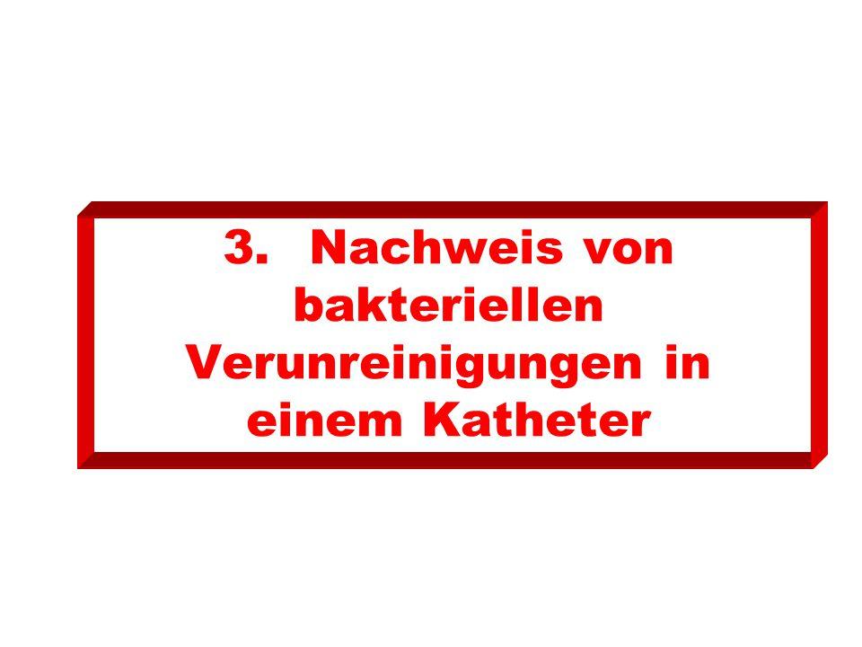 3.Nachweis von bakteriellen Verunreinigungen in einem Katheter