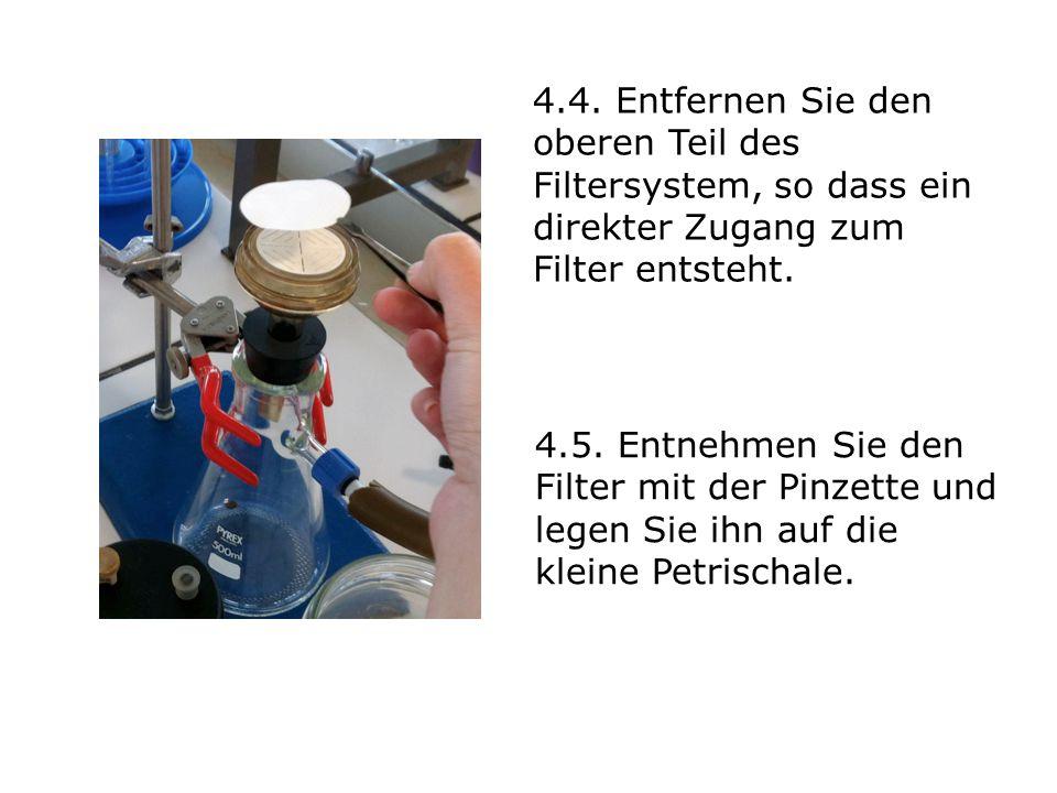 4.4. Entfernen Sie den oberen Teil des Filtersystem, so dass ein direkter Zugang zum Filter entsteht. 4.5. Entnehmen Sie den Filter mit der Pinzette u