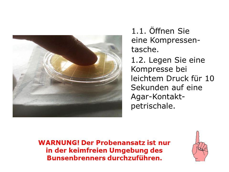 1.1. Öffnen Sie eine Kompressen- tasche. WARNUNG! Der Probenansatz ist nur in der keimfreien Umgebung des Bunsenbrenners durchzuführen. 1.2. Legen Sie