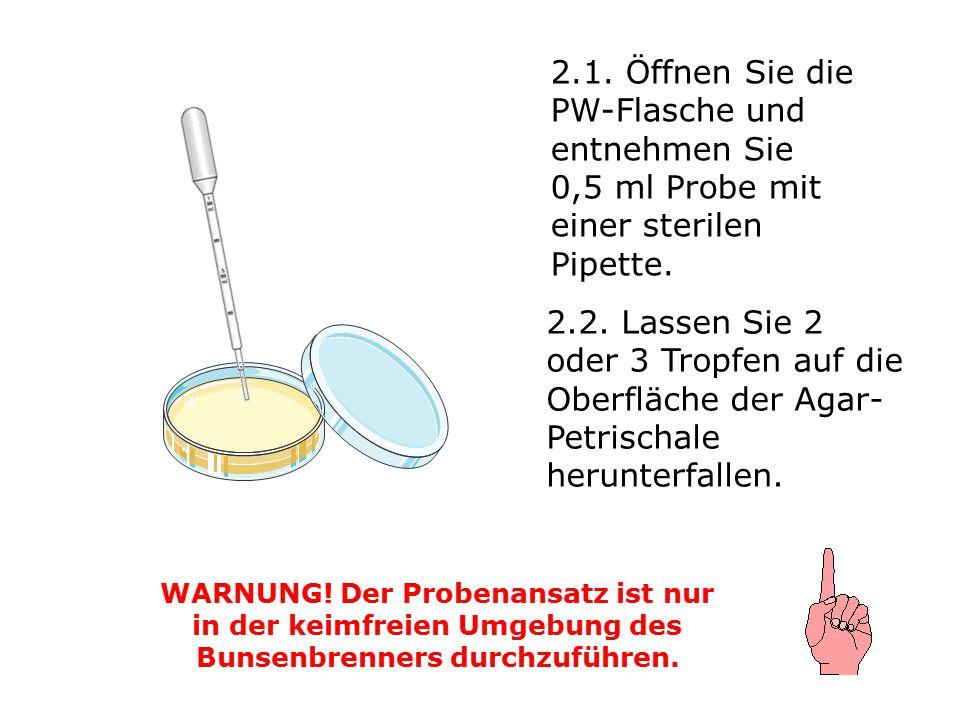 2.1. Öffnen Sie die PW-Flasche und entnehmen Sie 0,5 ml Probe mit einer sterilen Pipette. WARNUNG! Der Probenansatz ist nur in der keimfreien Umgebung