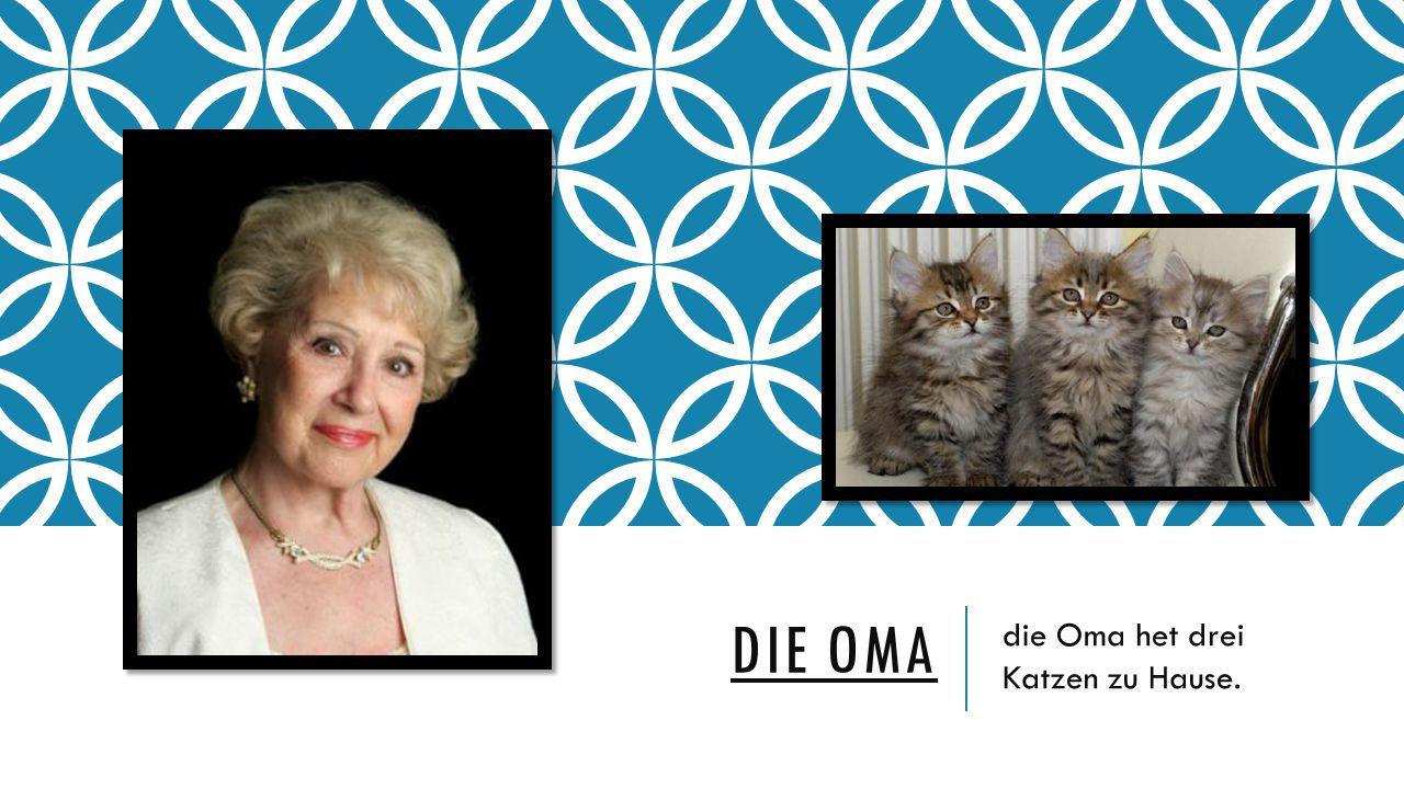 DIE OMA die Oma het drei Katzen zu Hause.