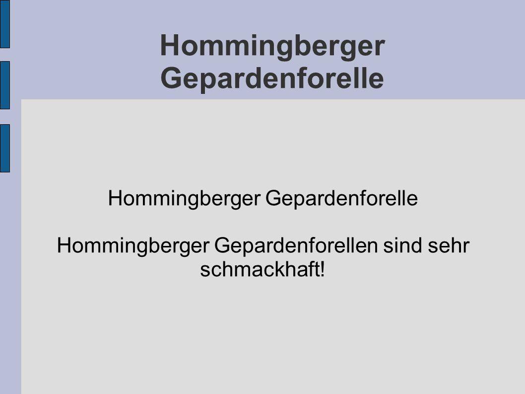 Hommingberger Gepardenforelle Hommingberger Gepardenforellen sind sehr schmackhaft!