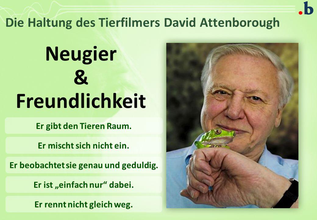 Die Haltung des Tierfilmers David Attenborough Neugier & Freundlichkeit Er gibt den Tieren Raum.