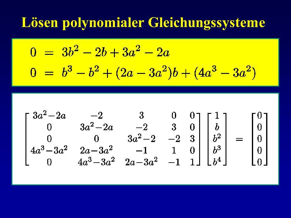 Lösen polynomialer Gleichungssysteme