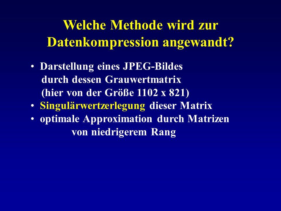 Welche Methode wird zur Datenkompression angewandt? Darstellung eines JPEG-Bildes durch dessen Grauwertmatrix (hier von der Größe 1102 x 821) Singulär