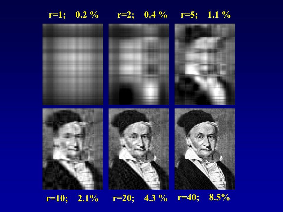 r=1; 0.2 %r=2; 0.4 %r=5; 1.1 % r=10; 2.1% r=20; 4.3 % r=40; 8.5%