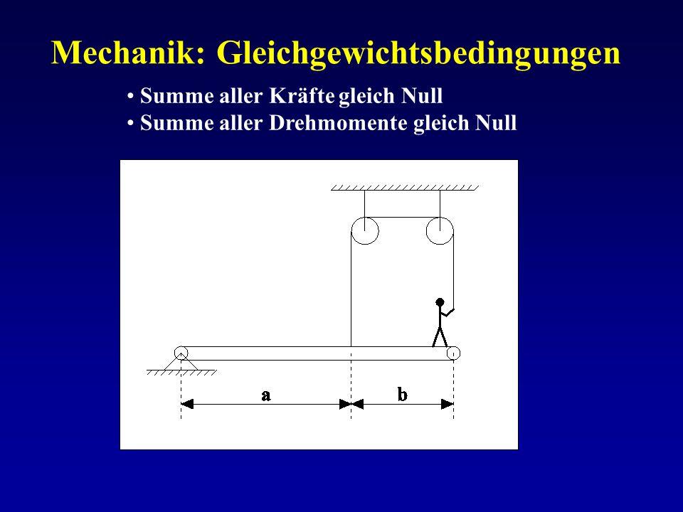 Mechanik: Gleichgewichtsbedingungen Summe aller Kräfte gleich Null Summe aller Drehmomente gleich Null