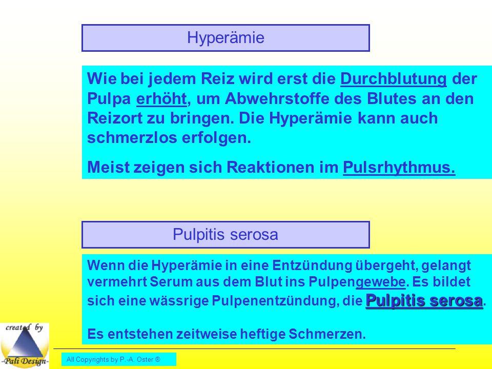 All Copyrights by P.-A. Oster ® Hyperämie Wie bei jedem Reiz wird erst die Durchblutung der Pulpa erhöht, um Abwehrstoffe des Blutes an den Reizort zu