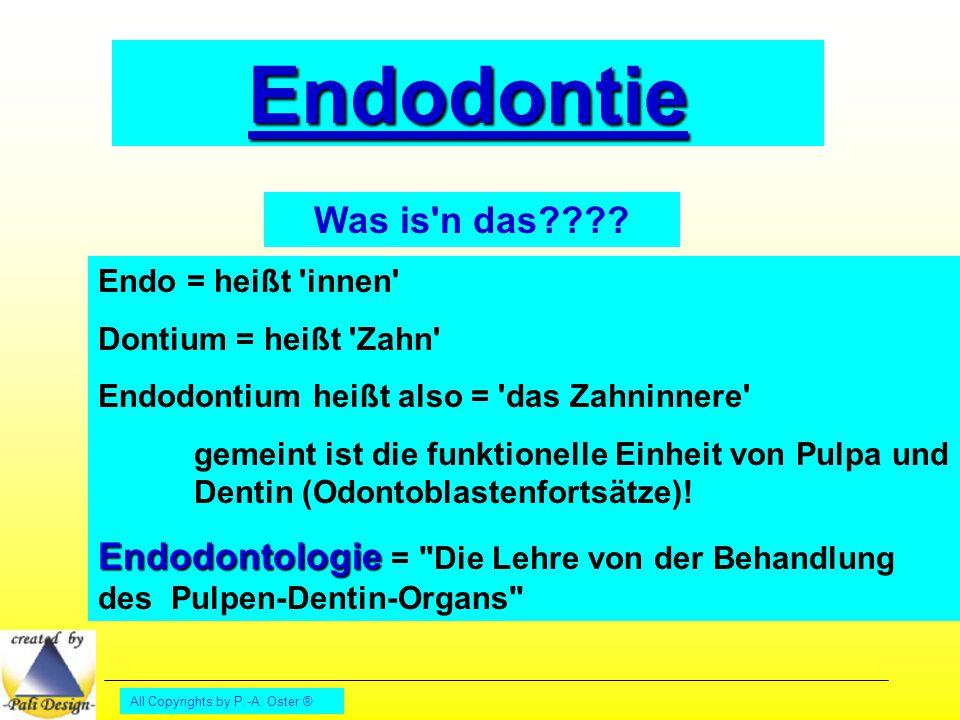 All Copyrights by P.-A. Oster ® Endodontie Was is'n das???? Endo = heißt 'innen' Dontium = heißt 'Zahn' Endodontium heißt also = 'das Zahninnere' geme