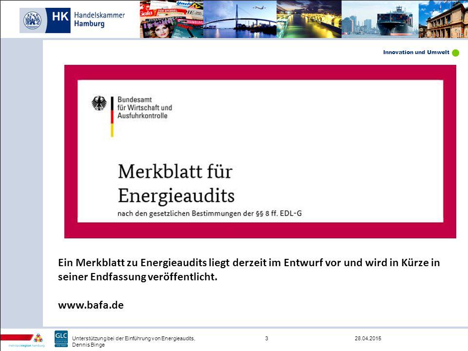 Innovation und Umwelt 28.04.20153Unterstützung bei der Einführung von Energieaudits, Dennis Binge Ein Merkblatt zu Energieaudits liegt derzeit im Entw