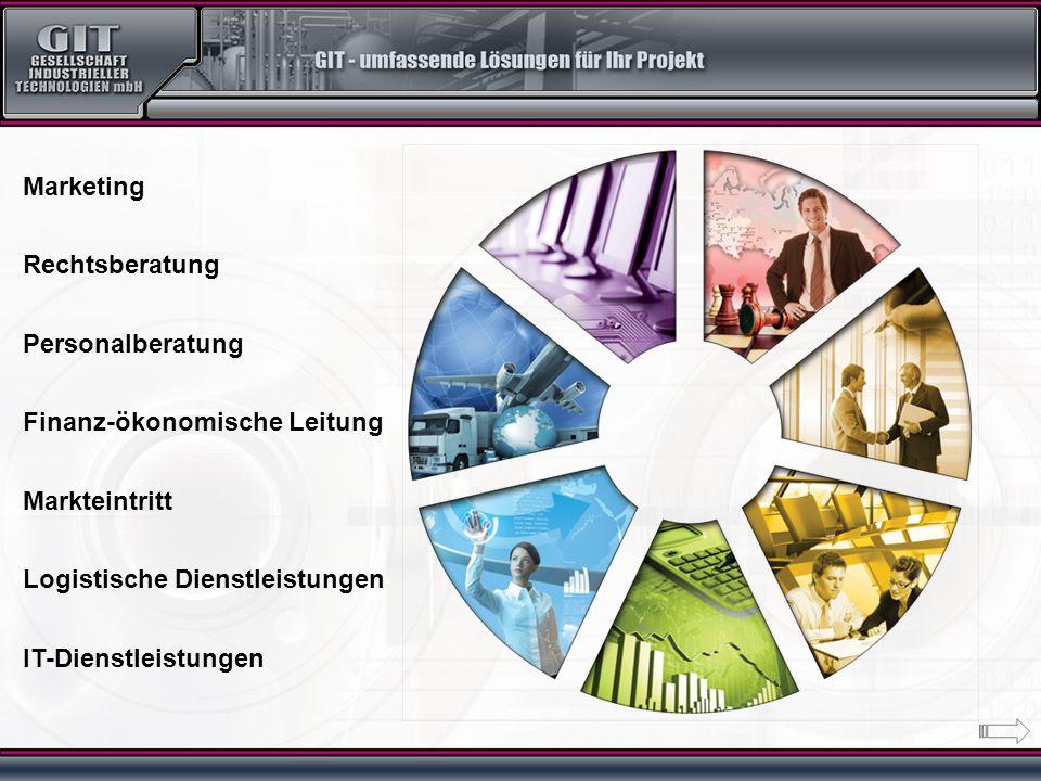 Marketing Rechtsberatung Personalberatung Finanz-ökonomische Leitung Markteintritt Logistische Dienstleistungen IT-Dienstleistungen