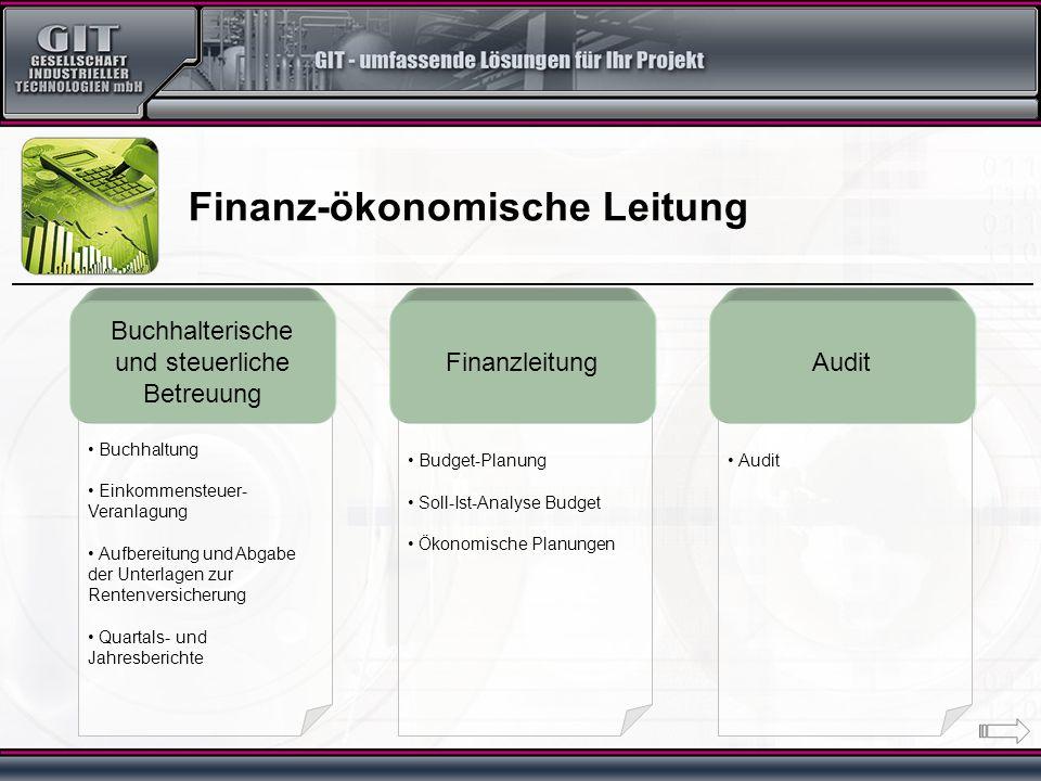 Audit Budget-Planung Soll-Ist-Analyse Budget Ökonomische Planungen Buchhaltung Einkommensteuer- Veranlagung Aufbereitung und Abgabe der Unterlagen zur