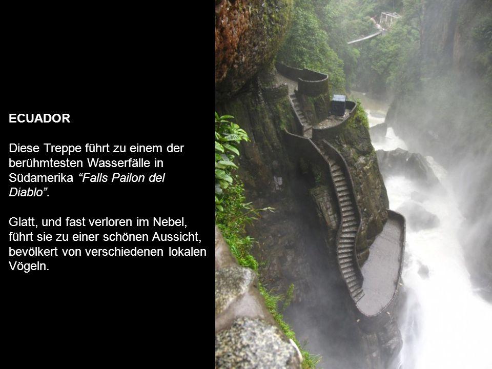 DEUTSCHLAND Würzburg in Bayern Aus einem Märchen von Hans Christian Andersen, dunkel und schön, führt diese Treppe zu einem Wasserfall, wo jedes Jahr viele Touristen gehen, um fotografiert zu werden.