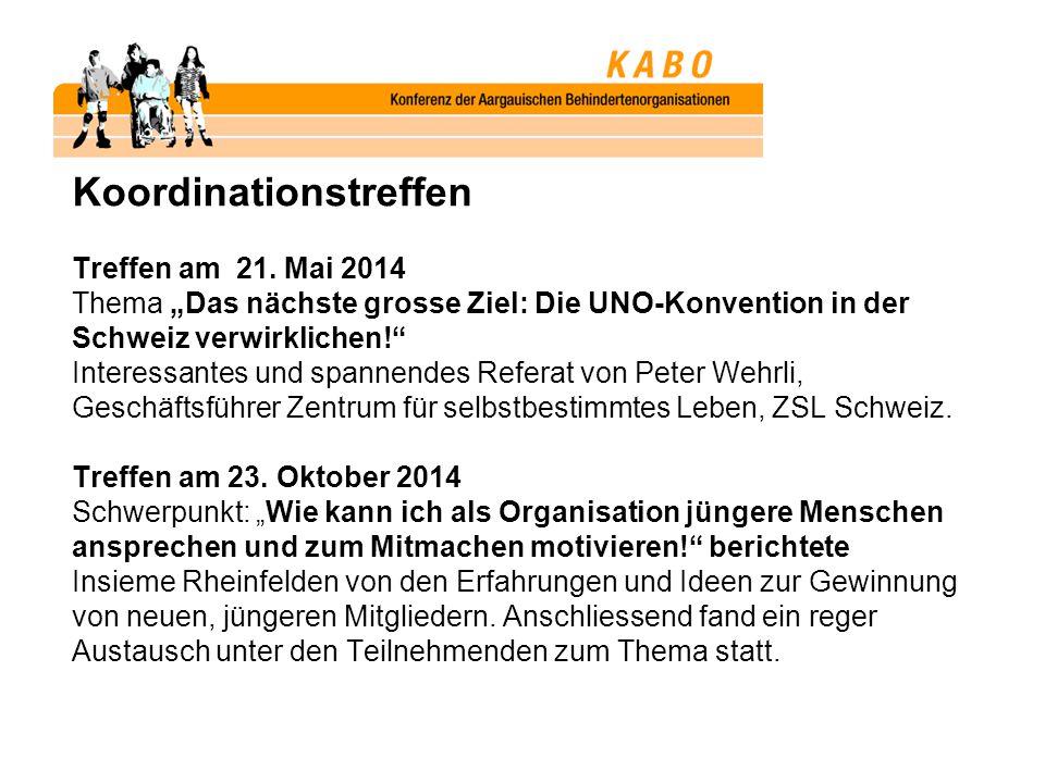 """Koordinationstreffen Treffen am 21. Mai 2014 Thema """"Das nächste grosse Ziel: Die UNO-Konvention in der Schweiz verwirklichen!"""" Interessantes und spann"""