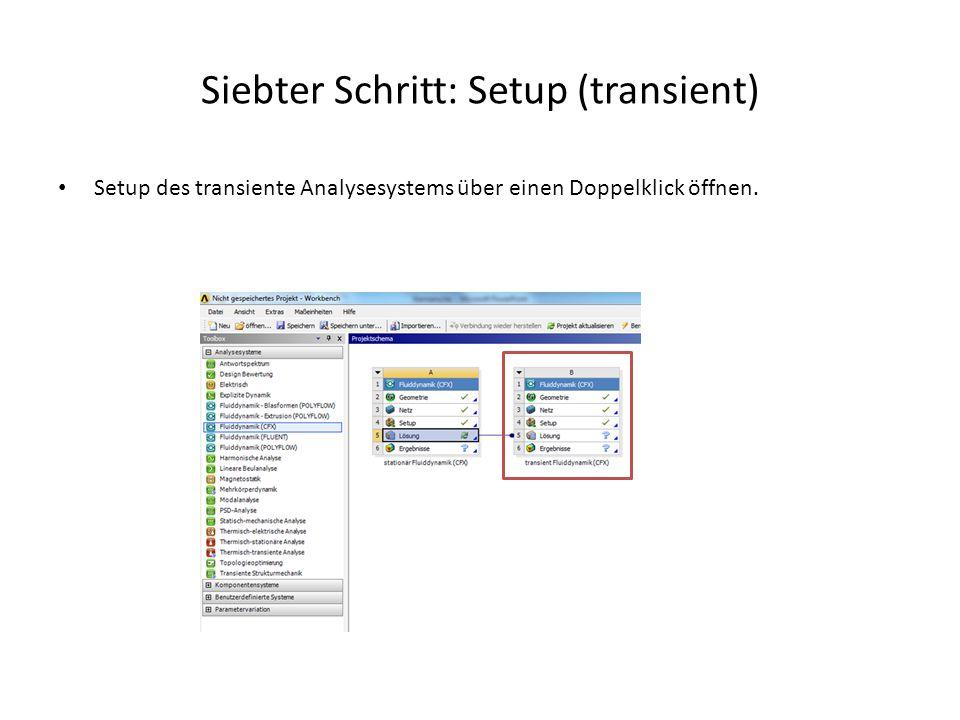 Siebter Schritt: Setup (transient) Setup des transiente Analysesystems über einen Doppelklick öffnen.