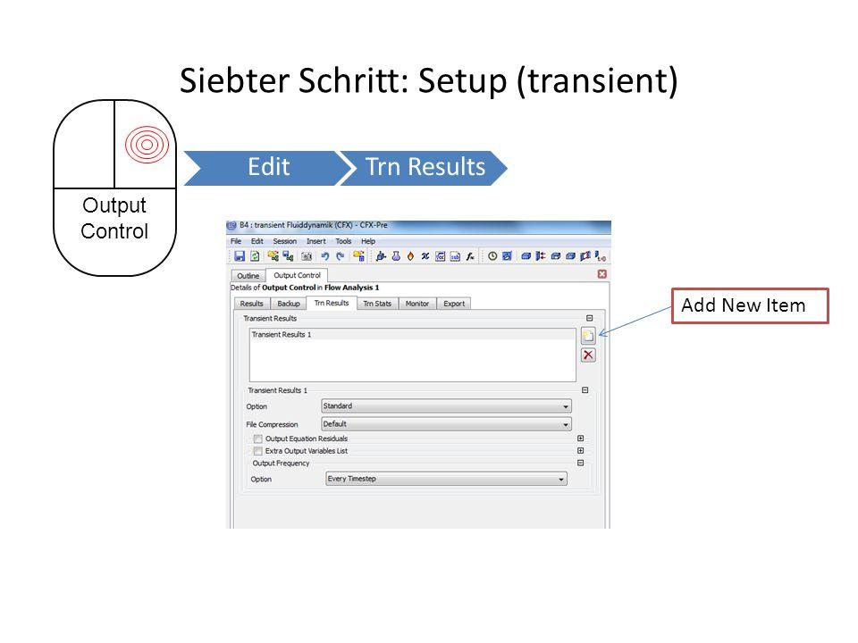 Siebter Schritt: Setup (transient) Output Control EditTrn Results Add New Item