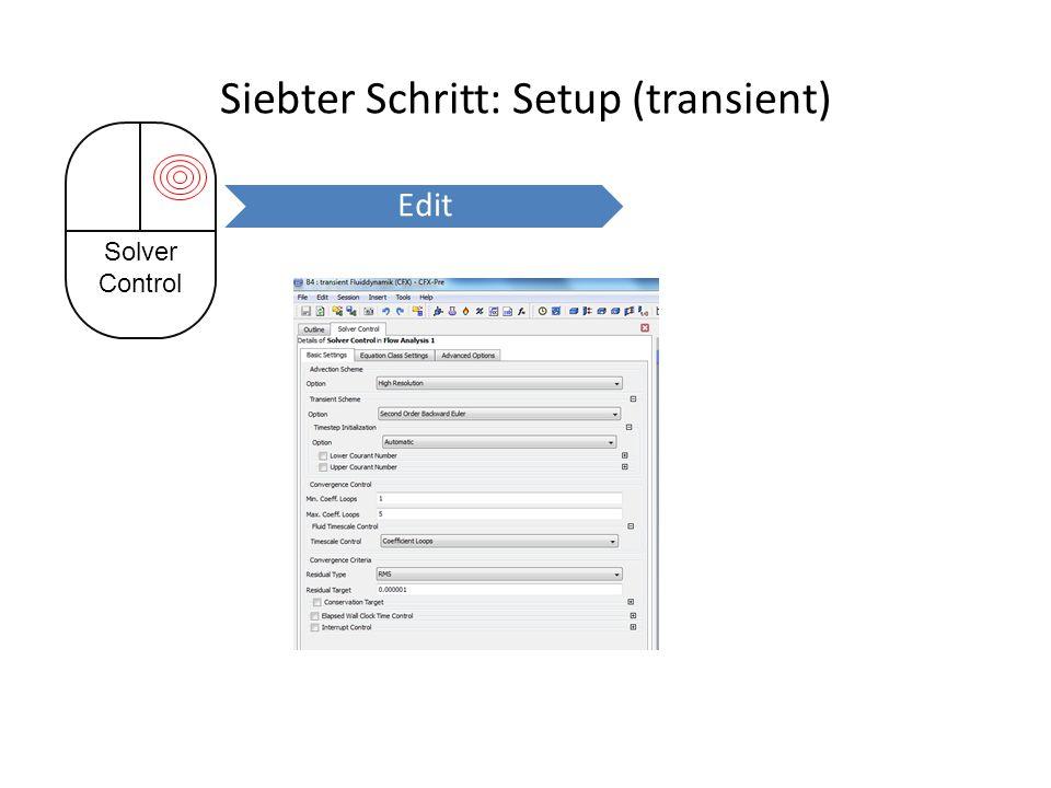 Siebter Schritt: Setup (transient) Solver Control Edit