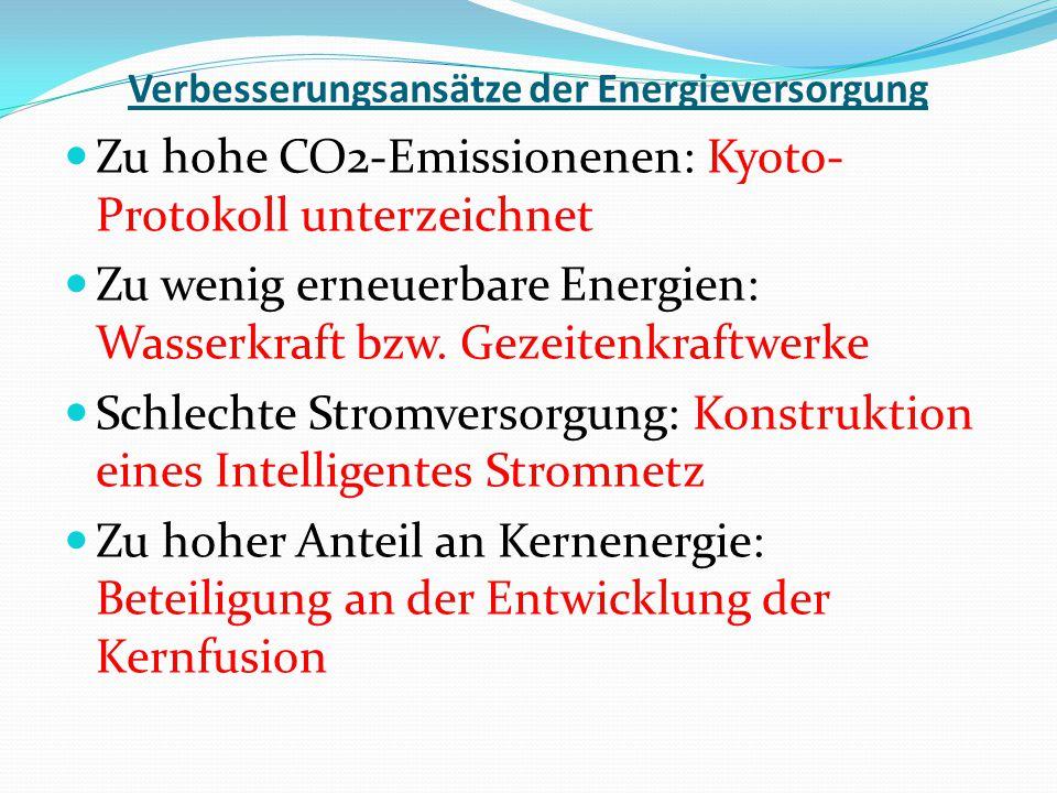 Verbesserungsansätze der Energieversorgung Zu hohe CO2-Emissionenen: Kyoto- Protokoll unterzeichnet Zu wenig erneuerbare Energien: Wasserkraft bzw. Ge