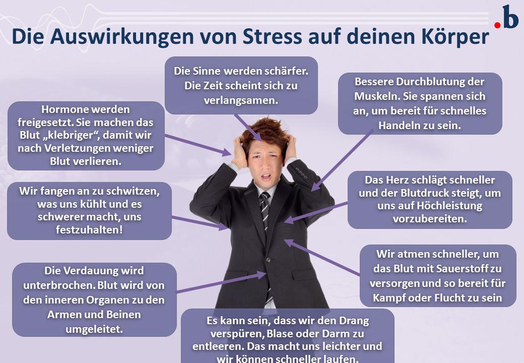 Wie wirkt Stress auf DICH? In deinem Körper?  In deinem Geist?  Auf dein Verhalten? 