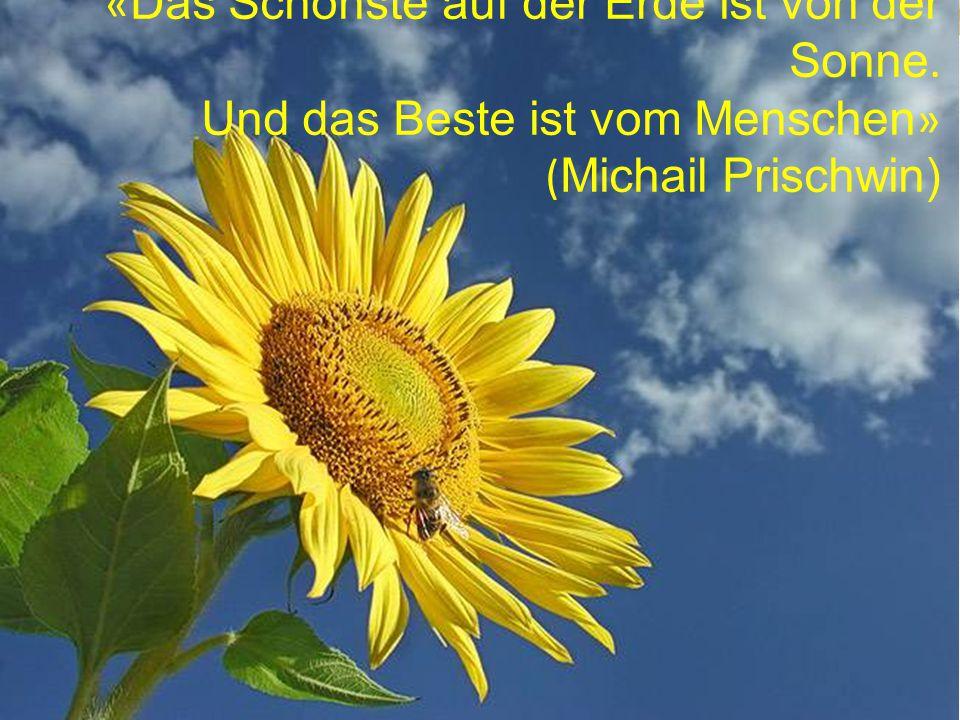« Das Schönste auf der Erde ist von der Sonne. Und das Beste ist vom Menschen » ( Michail Prischwin)