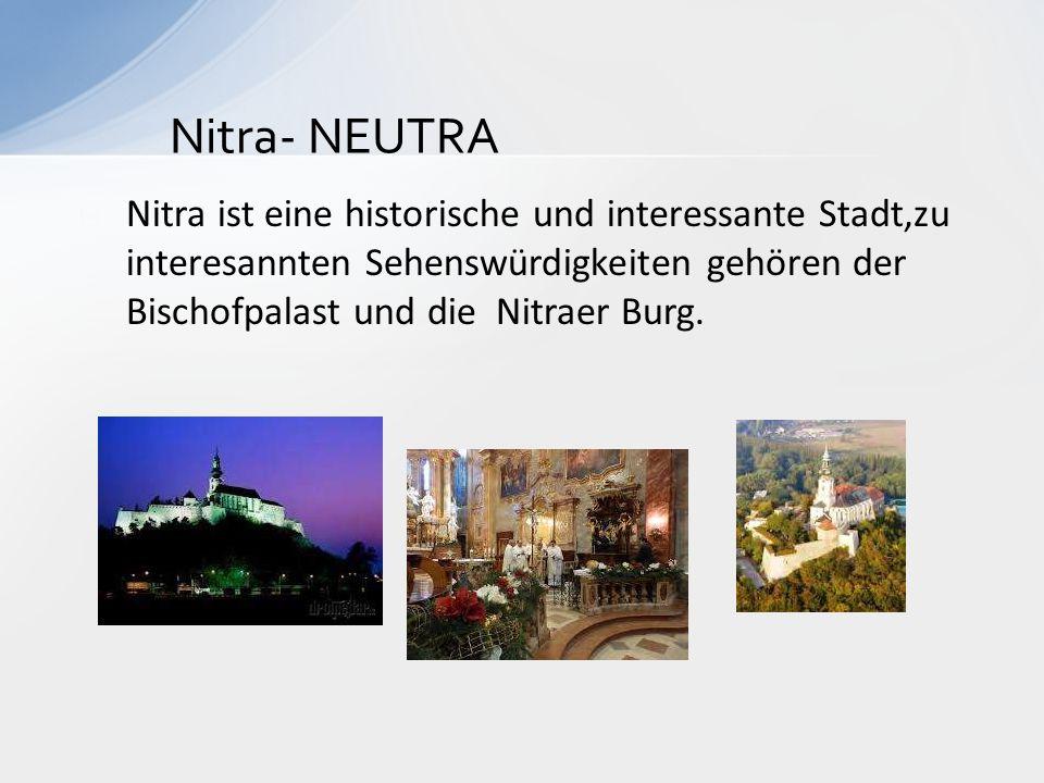  Nitra ist eine historische und interessante Stadt,zu interesannten Sehenswürdigkeiten gehören der Bischofpalast und die Nitraer Burg. Nitra- NEUTRA