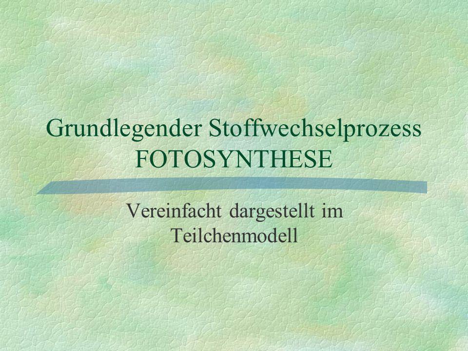 Fotosynthese im Teilchenmodell: 1.Schritt §Wasser wird mit Hilfe der Sonnenenergie gespalten.