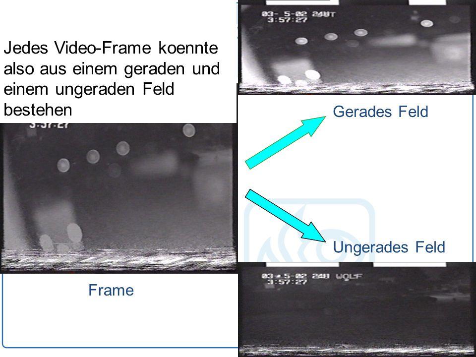 Jedes Video-Frame koennte also aus einem geraden und einem ungeraden Feld bestehen Frame Gerades Feld Ungerades Feld