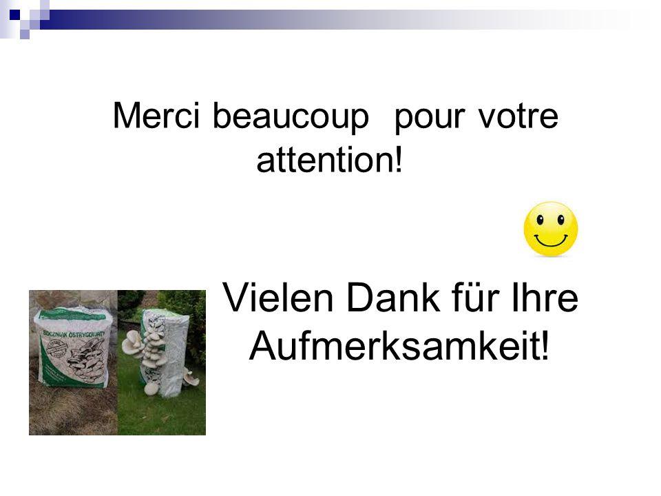 Merci beaucoup pour votre attention! Vielen Dank für Ihre Aufmerksamkeit!