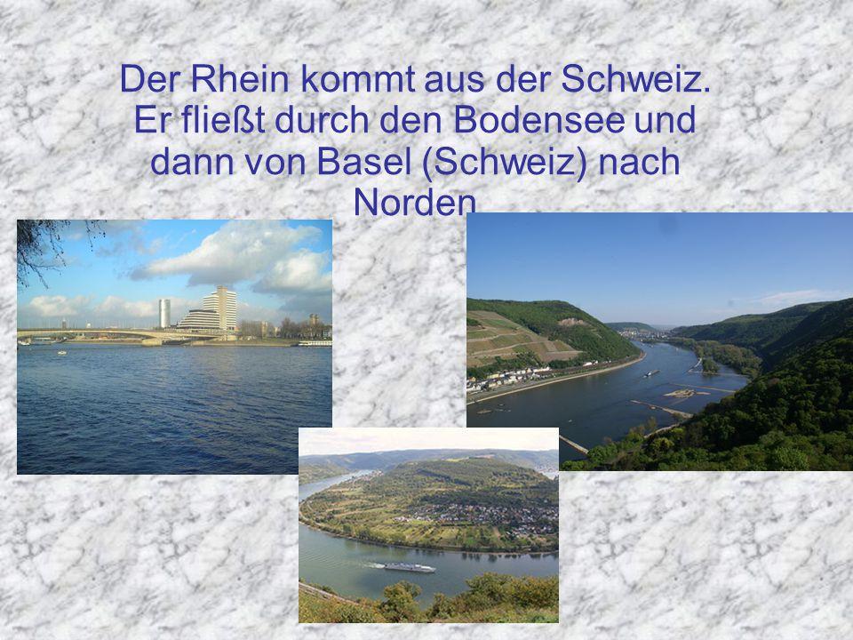 Der Rhein kommt aus der Schweiz. Er fließt durch den Bodensee und dann von Basel (Schweiz) nach Norden