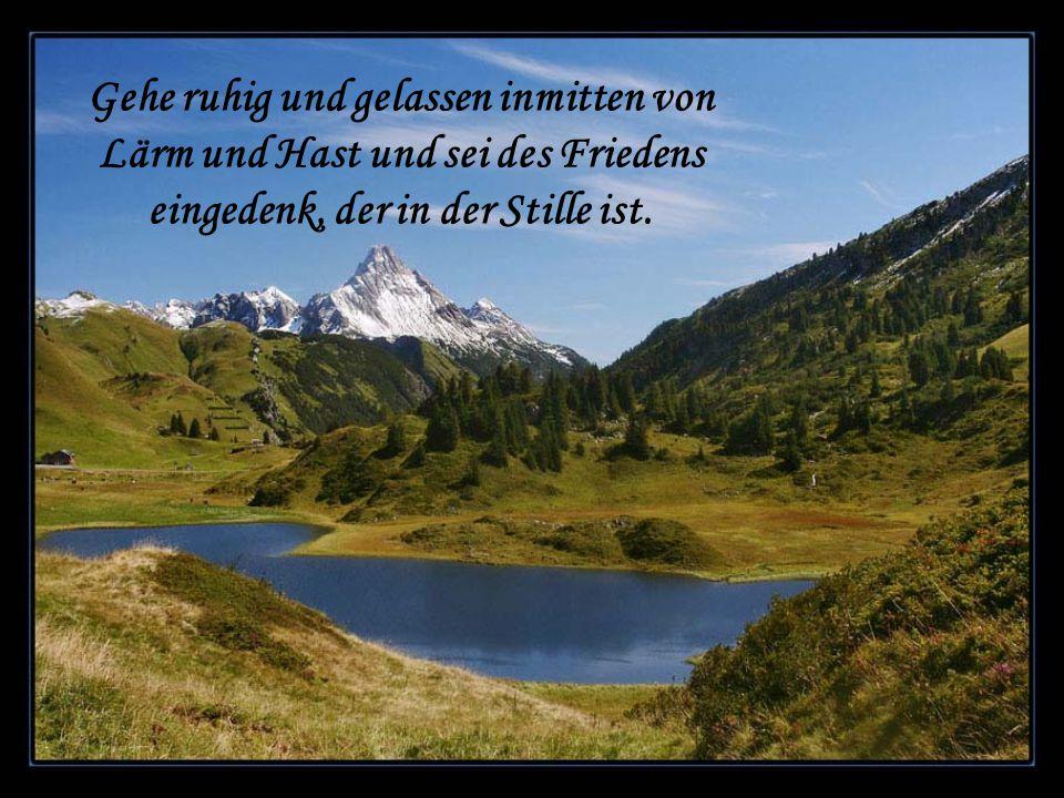 Gehe ruhig und gelassen inmitten von Lärm und Hast und sei des Friedens eingedenk, der in der Stille ist.