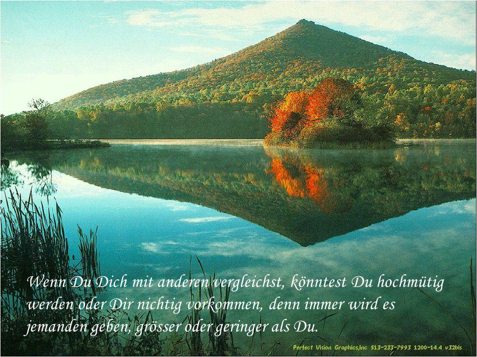 Und was auch immer Dein Mühen und Sehnen in der lärmenden Wirrnis des Lebens ist, bewahre den Frieden in Deiner Seele.